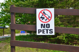 Houston Dangerous Dog Bite Laws